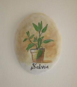 camera-salvia2-bed-and-breakfast-salento-le-pigne-taurisano3